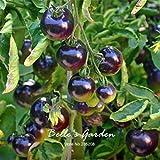 SwansGreen 50pcs 'Rose Blue' Tomato Seeds New Variety Purple Tomato Vegetable Seeds Home Garden Bonsai Tomato Plant DIY