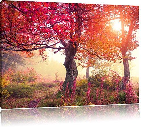 Traumhafte Herbstlandschaft Format: 120x80 auf Leinwand, XXL riesige Bilder fertig gerahmt mit Keilrahmen, Kunstdruck auf Wandbild mit Rahmen, günstiger als Gemälde oder Ölbild, kein Poster oder Plakat