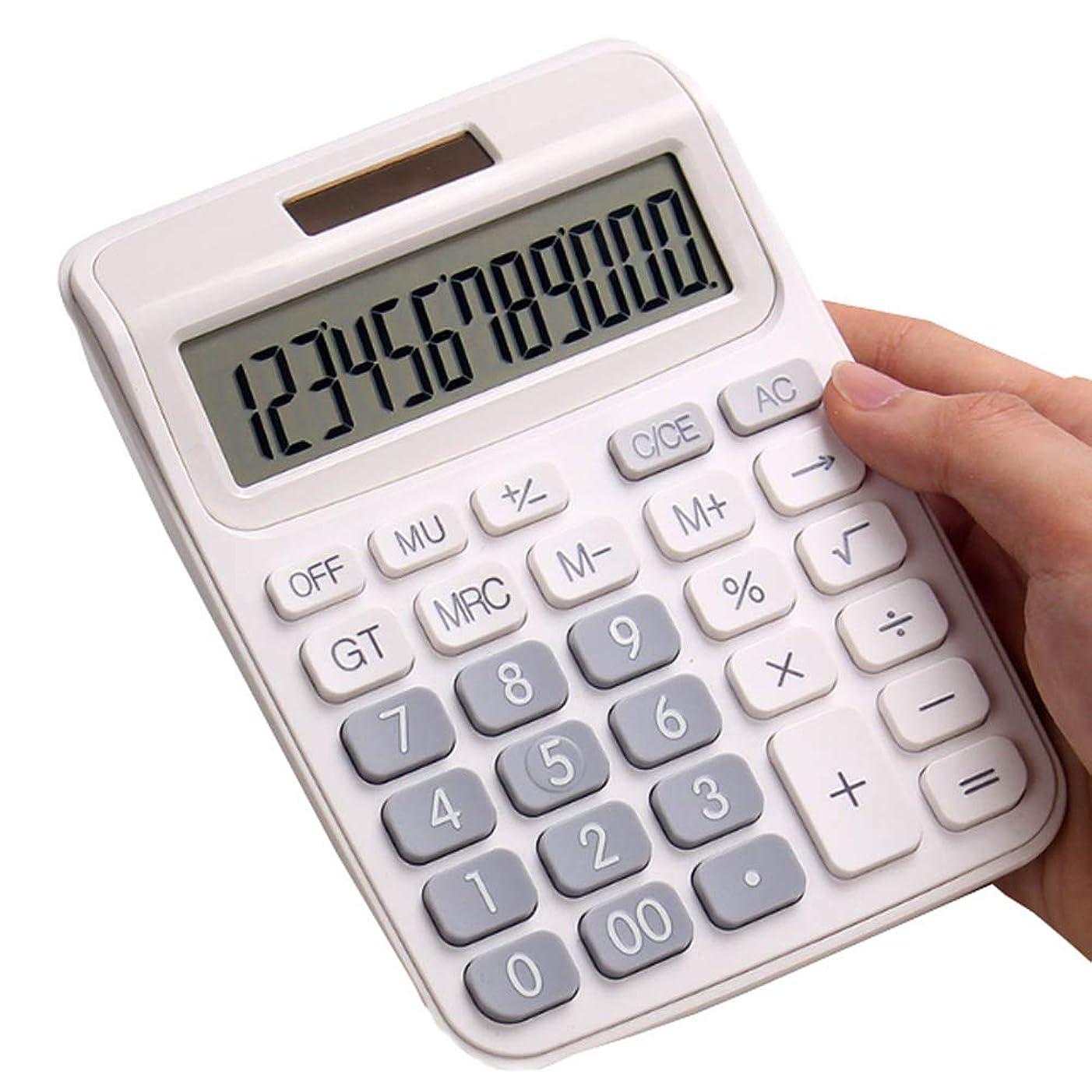 著名なウェーハレイ双方向電源を備えた通常の電卓 - 白