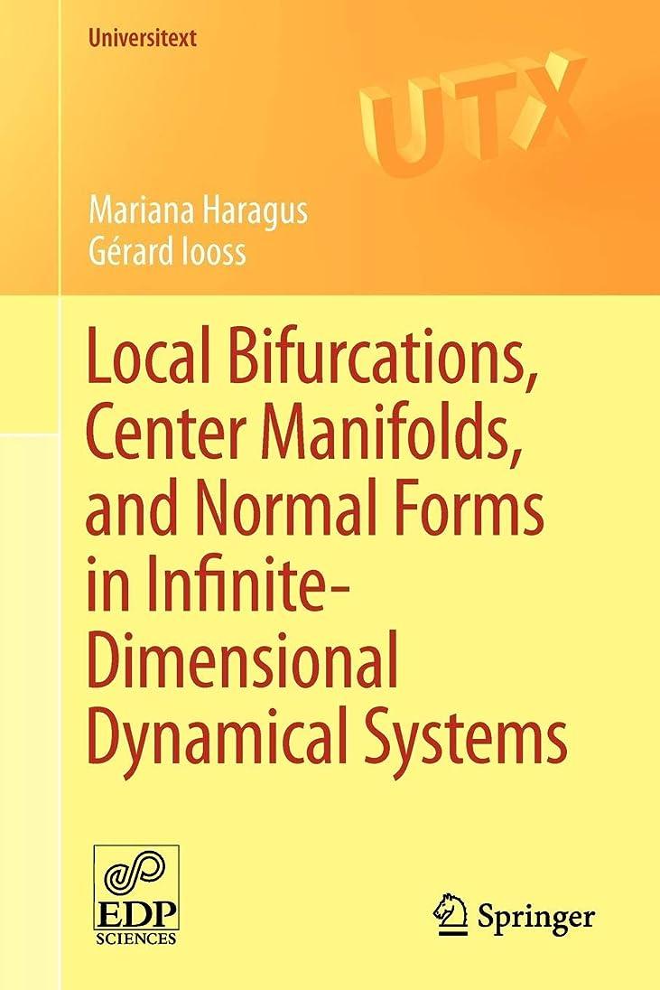 退院曖昧なサーカスLocal Bifurcations, Center Manifolds, and Normal Forms in Infinite-Dimensional Dynamical Systems (Universitext)
