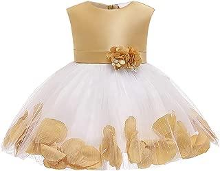 Yotree Kids Girls Banquet Dress Wedding Petal Embroidery Lace Flower Lotus Leaf Formal Dress 0-6Years