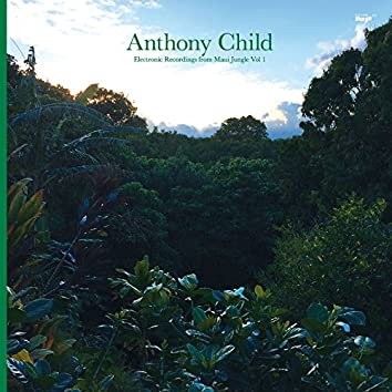 Electronic Recordings from Maui Jungle, Vol. 1
