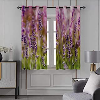 Lavender, Blackout Curtains Fragrant Gardening Plants for Window, Patio Door, Set of 2 Panels (31.5 x 72 Inch)