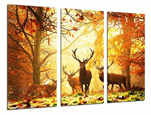 Cuadro Fotográfico Animal Ciervos en la Naturaleza, paisaje de Otoño Tamaño total: 97 x 62 cm XXL