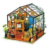 Robotime Poupées en Bois modèle Kits rénovation de Meubles - Kit de Construction Woodcraft Green House Bricolage - Jouets éducatifs, Mini Maison Miniature Diorama à la Main (Garden House)