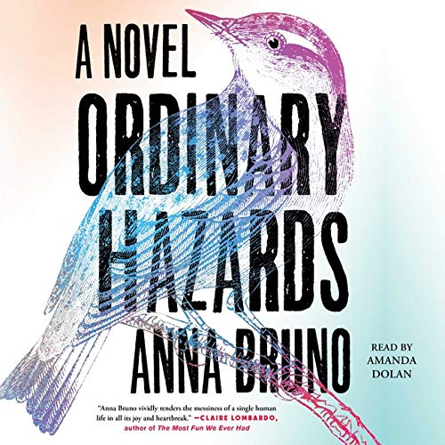 Ordinary Hazards Audiobook By Anna Bruno cover art