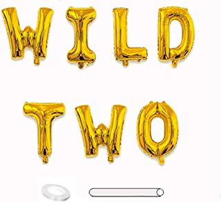 Wild Two Balloons Banner Gold 2nd Birthday Balloon Backdrop 16 in Letters Foil Mylar Balloons Jungle Animals Party Decorations