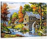 TAHEAT Kits de pintura por números con pinceles y pigmento acrílico para pintar en lienzo para niños, adultos, principiantes, cabaña de campo, 16 x 20 pulgadas (marco de madera)