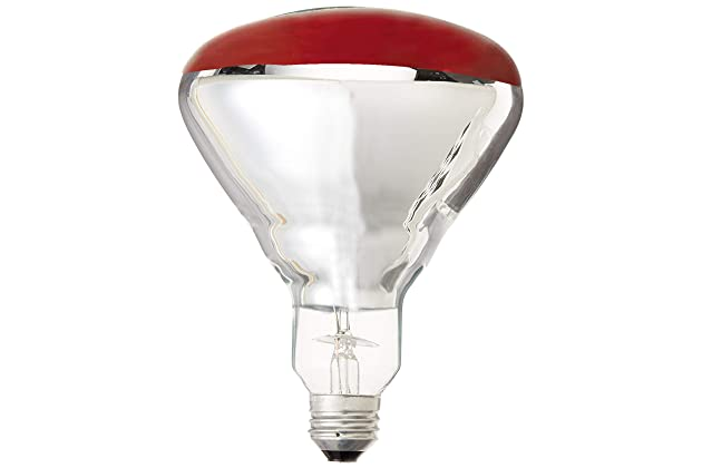 Best Heat Lamps For Bathroom Amazoncom
