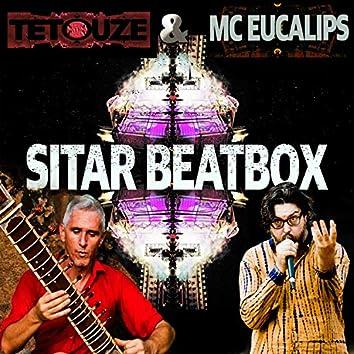Sitar Beatbox (feat. Mc Eucalips)
