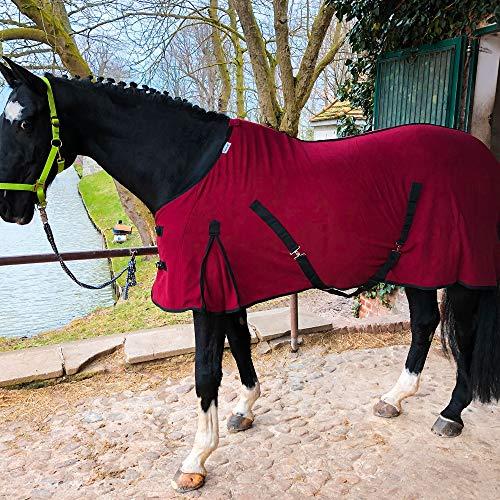 Abschwitzdecke mit Kreuzgurt für Pferde, Ponys – Atmungsaktive Pferdedecke aus Fleece – für schnelles Trocknen & Wärmen (Bordeaux, 135 cm)