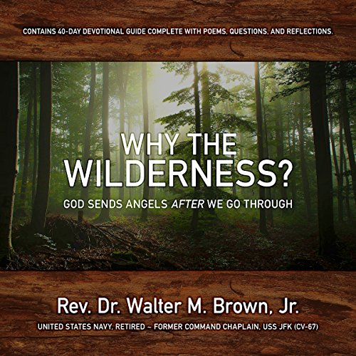 Why the Wilderness? audiobook cover art