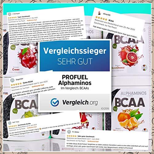 PROFUEL® Alphaminos Blutorange – BCAA 2:1:1 (Leucin, Isoleucin & Valin) – Hervorragende Löslichkeit und sensationeller Geschmack – Hochwertige verzweigkettinge Aminosäuren made in Germany – Vor, während oder nach dem Training – 300 Gramm Dose (Pulver) - 2