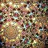 Caleidoscopio Liquido a Scorrimento Automatico in Fiala 15 cm. Farfalle #2