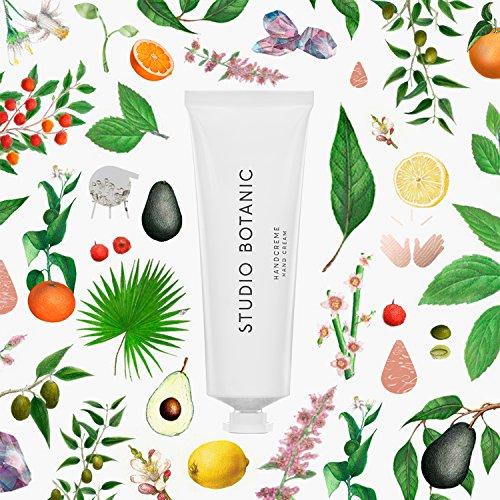 Studio Botanic Handcreme – schnell einziehend & nicht fettend – 50 ml Alutube – 100% Rein Natürlich – Zertifizierte Vegane Naturkosmetik
