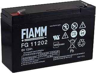 FIAMM Recambio de Batería para Moto Infantil Buggy para ni