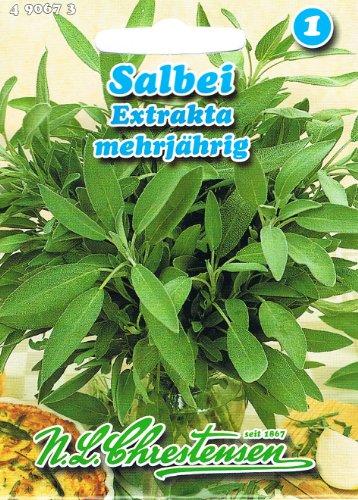 Salbei, Extrakta - (Portion)