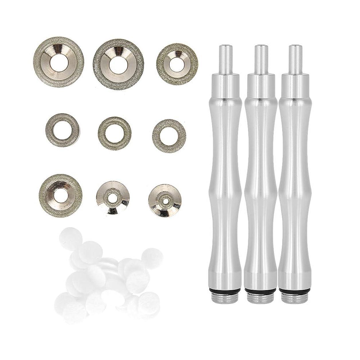 斧死ぬ利得ダイヤモンドマイクロダーマブレーションヒント 、交換用、ハンドル付き、ステンレススチール製フィルターセット