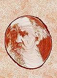 Lev della radura. Un racconto con Tolstoj
