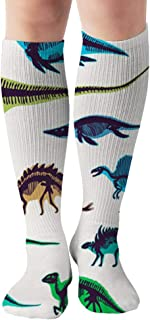 Set Silhouettes Dino Skeletons Dinosaurs Fossils Dinosaur The Arts Compression Socks For Women And Men - Best Medical,For Running, Athletic, Varicose Veins, Travel 19.68 Inch