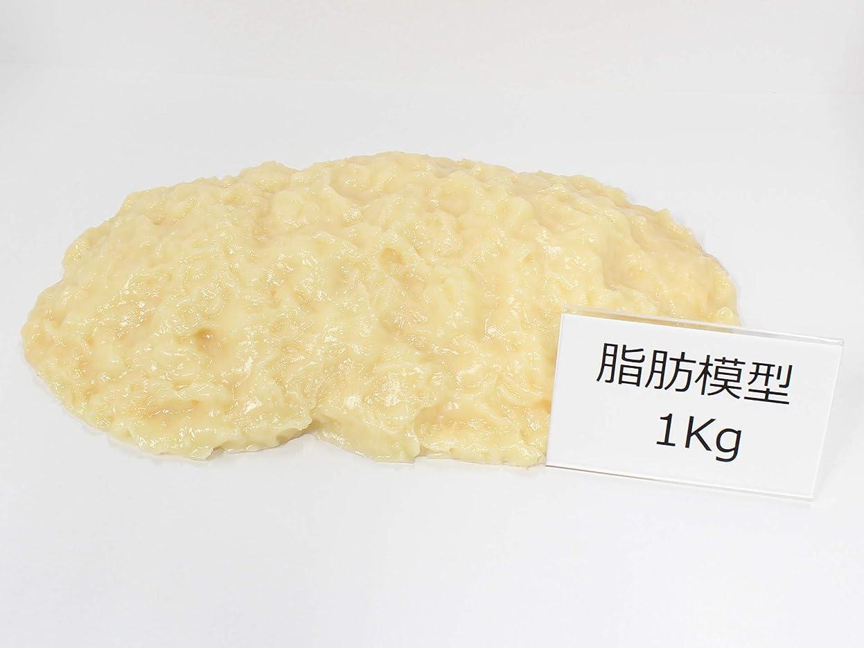 恥ずかしさ境界侵入脂肪サンプル 脂肪模型 1kg 食品サンプル 実物重量 ダイエット トレーニング フードモデル