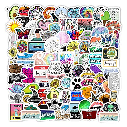 Cute Stickers for Water Bottles, 100 Pack Waterproof Aesthetic Trendy VSCO Girl Stickers for Teens, Girls, Kids, Laptop Stickers for Phone, Luggage, Skateboard