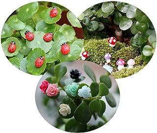 Tophappy 100pcs Miniature Fairy Garden Ornaments Kit Set, Ladybugs,Mushrooms, Flowers with Tools for DIY Fairy Garden Dollhouse Décor