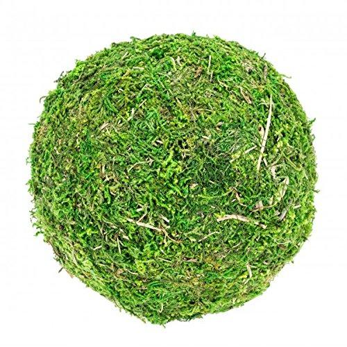 NaDeco Moos Ball Ø 15cm Moos Kugel Moosball Mooskugel Deko Moos Moos Deko