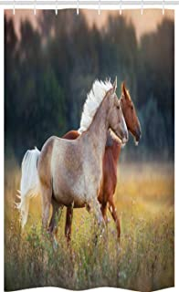 ABAKUHAUS Farm Animal Stall Shower Curtain, Picturesque Palomino and Chestnut Horse Run Fast at Meadow with Wild Flowers, ...