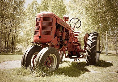 wandmotiv24 Fototapete Traktor Maschine Landwirtschaft XS 150 x 105cm - 3 Teile Fototapeten, Wandbild, Motivtapeten, Vlies-Tapeten Oldtimer, Reifen, Technik M0517