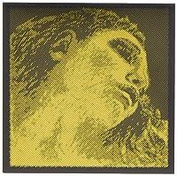 EVAH PIRAZZI GOLD エヴァ ピラッツィ ゴールド ヴァイオリン弦セット(G線ゴールド) (E線ループエンド)