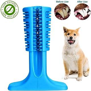 Amazon.it: dentifricio per cani