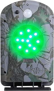 green hog feeder light