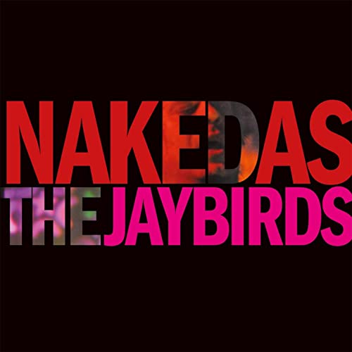 Are as jaybird naked sorry, that