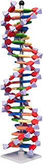 Molymod miniDNA (AMDNA06022) DNA Model 22 Base Pair Layer Kit