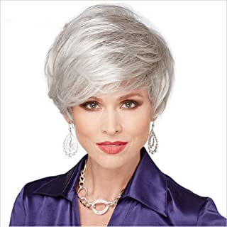 Short Silver Gray Synthetic Wig Fluffy Little Curly Wavy Grey Costume Wigs for Old Middle Age Women Office Lady