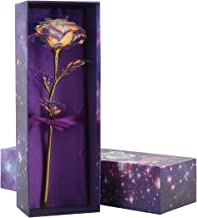 Eurobuy Foil Artificial Colorful Rose Flower Unique Romantic Gift for Valentine's Day Forever Rose,Anniversary,Mother's Day Birthday Gift (Without Light)