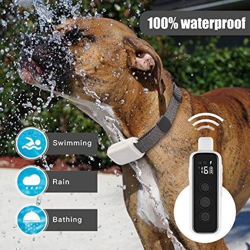 Epioneer Shock Collar for Dogs