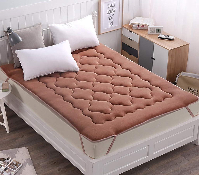 Tatami Mattress Mattress Mattress Tatami Bed Double Bed Tweezers Student Dormitory Pad is Sweat-Absorbent Breathable Tatami Mattress Double G (color   B, Size   120x200cm (47x79inch))
