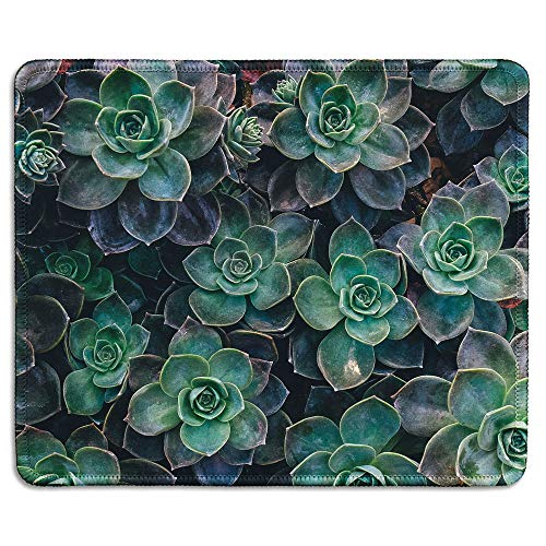 dealzEpic - Art Mousepad - Natural Rubber Mouse Pad Printed with Succulent Plants - Stitched Edges - 9.5x7.9 inches