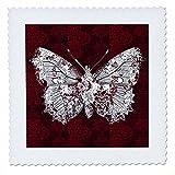 3dRose QS 61051_ 1Pretty Lacey Schmetterling auf einem