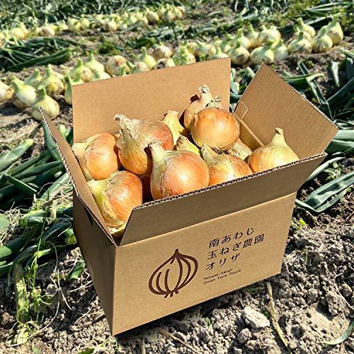 淡路島 玉ねぎ 5kg 玉葱 たまねぎ 2021年 減農薬 サイズ・個数 お任せ【農家直送 限定販売 早生品種】