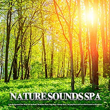 Nature Sounds Spa: Calm Background Flute Music For Spa Music, Meditation Music, Yoga Music, Massage Music, Sleeping Music and Forest Bird Sounds For Relaxation