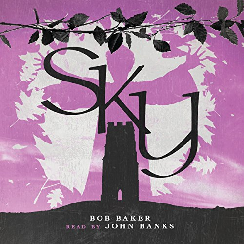 Sky audiobook cover art