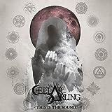 Songtexte von Cellar Darling - This Is the Sound