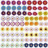 SUNNYCLUE 90 Piezas 18 Colores Cabezas de Flores Artificiales Flores de Margarita Falsas Pequeños Girasoles de Seda para Manualidades DIY Sombrero Decoración del Hogar Decoración del Arte de la Boda