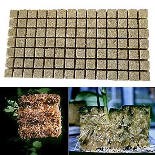 Rock Wolle Würfel, Steinwolle Wachsen Würfel, Rockwool Starter Zündkerzen, Hydrokultur Wachsende Medien Soilless Steinwolle Starter Zündkerzen für Pflanzen Wachsende Klon Pflanze Vermehrungsgut