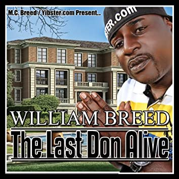 The Last Don Alive