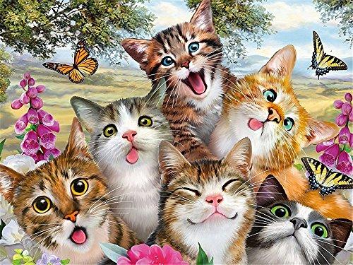 HUANSUNWO Kit de pintura al óleo por números, kit de pintura al óleo para adultos y niños principiantes, 40,6 x 50,8 cm, diseño de mariposas de gatos (sin marco)