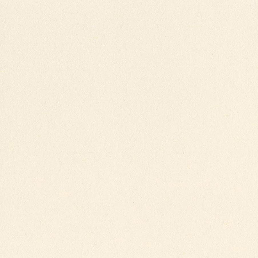 Bazzill Basics Paper 8-825 Card Shoppe Heavy Weight Cardstock, 25 Sheets, 8.5 by 11-Inch, Butter Mints